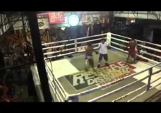 Thai Bin Lids Fight